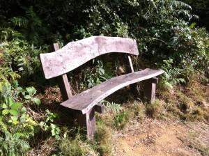 Memorial Bench Inspiration